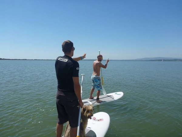 NARBONNE KITE PASSION - STAND UP PADDLE